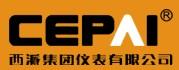 西派集团有限公司公司logo
