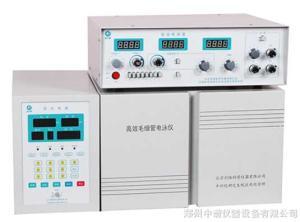 CL1010 CL1010高效毛细管电泳仪(安培检测)产品图片