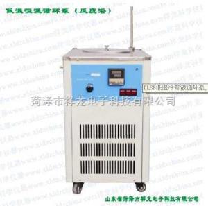 DLSB 低温冷却液循环泵