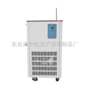 DLSB-10L低溫冷卻液循環泵