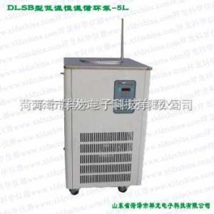 DLSB-5/25 低溫恒溫冷卻液循環泵DLSB-5/25 菏澤祥龍