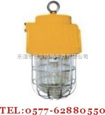 DGS70-127B(E)★ DGS70-127B(E)★DGS70-127B(E)★DGS70-127B(E) 矿用隔爆型泛光灯产品图片