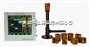SHB-TS3 铁水质量管理仪产品图片