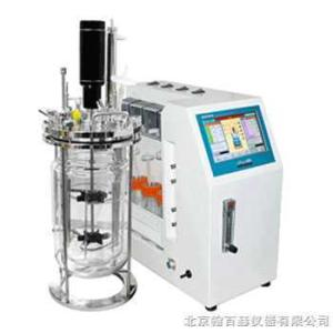 LiFlus GX/GXⅡ 韩国Biotron(百特仑) LiFlus GX/GXⅡ实验室发酵罐产品图片