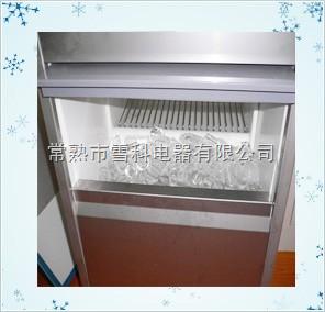 IM-100中小型雪花制冰機廠家