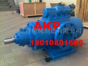 HSNH2900-40N管道冲洗泵HSNH2900-40W1产品图片